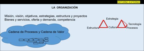 organizacion + procesos