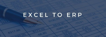 excel to erp